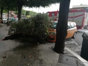 Macchina piazza Conteduca, 9 luglio 2019